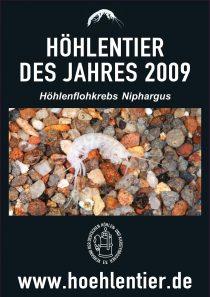 Höhlenflohkrebs - Höhlentier des Jahres 2009 - Poster