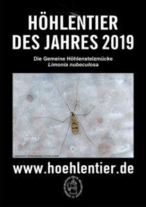 Gemeine Höhlenstelzmücke - Höhlentier des Jahres 2019 - Poster