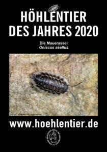 Mauerassel - Höhlentier des Jahres 2020 - Poster