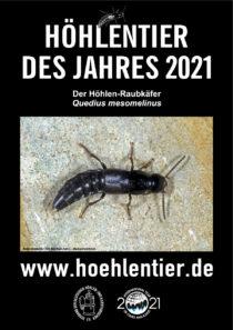 Höhlen-Raubkäfer - Höhlentier des Jahres 2021 - Poster